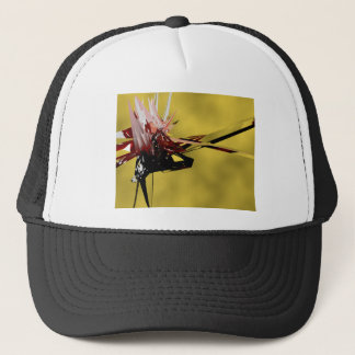 The Inter-Dimensional Traveller.png Trucker Hat