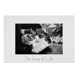 The Irony of Life Poster