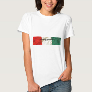 The Italian American Women's Association T Shirt