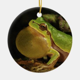 The Italian Tree Frog Hyla Intermedia Ceramic Ornament