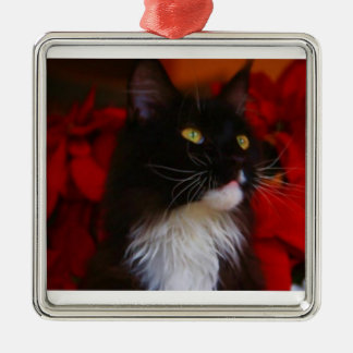 The Jackie Miller Kitty Ornament