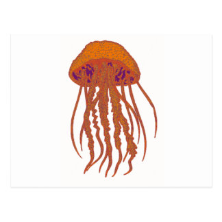 THE JELLYFISH SIGNS POSTCARD
