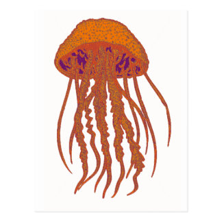 THE JELLYFISH SIGNS POST CARD