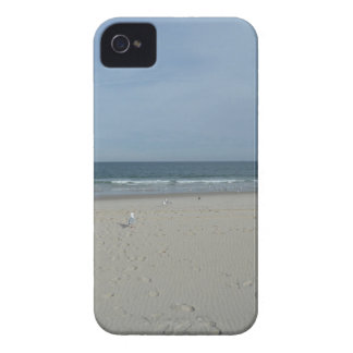 The Jersey Shore iPhone 4 Covers