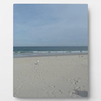 The Jersey Shore Plaque