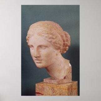 The Kauffmann Head, Head of Aphrodite Poster