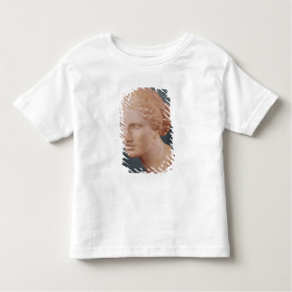 The Kauffmann Head, Head of Aphrodite T Shirt