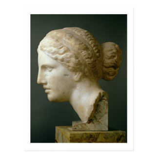 The Kauffmann Head, Roman (marble) Postcard