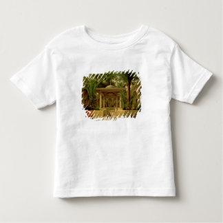The Khabanija Fountain, Cairo, 1845 Toddler T-shirt