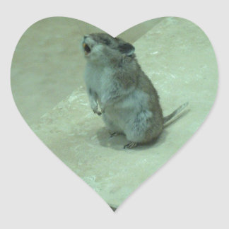 The Killer Mouse (Onychomys leucogaster) howls! Heart Sticker