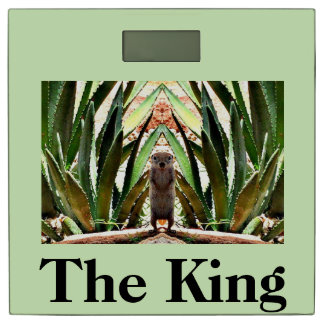 The King Ground Squirrel Bathroom Scales