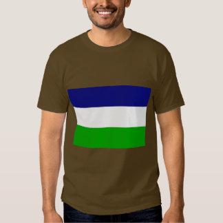 the Kingdom Araucania and Patagonia, Chile T-shirt