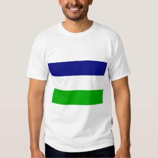 the Kingdom Araucania and Patagonia, Chile Tee Shirts