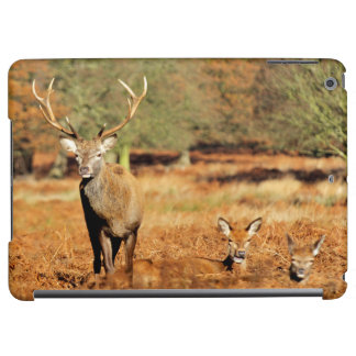 The King's Deer, red deer stags 2 iPad Air Cover