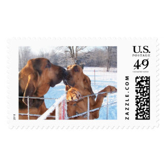 The Kiss - Bloodhound Postage