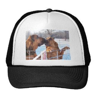 The Kiss - Bloodhound Trucker Hat