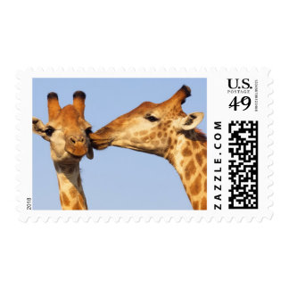 The Kiss Postage