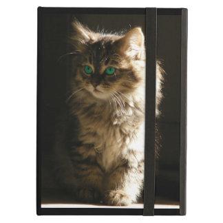The Kitten iPad Cases