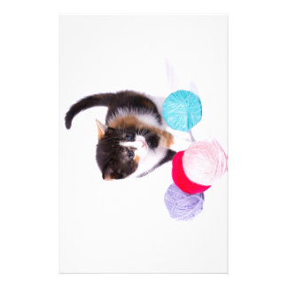 The Kitten Stationery