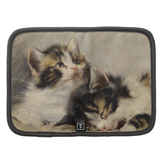 The kitten which you dream folio planners