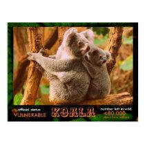 THE KOALA (Bear) is endangered, read this:  - Postcard