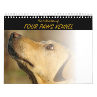 The Labradors of Four Paws Kennel Wall Calendars