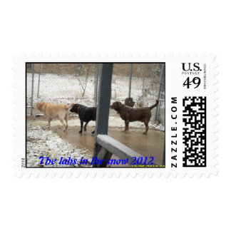 The labs in the snow 2012 postage
