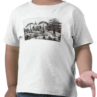 The Labyrinth from the Jardin des Plantes T Shirt