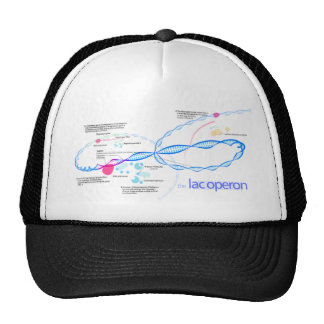 The Lac Operon Diagram Trucker Hat