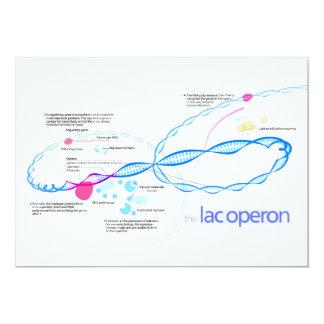 The Lac Operon Diagram 5x7 Paper Invitation Card