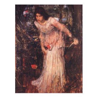 The Lady of Shalott (study) Postcard