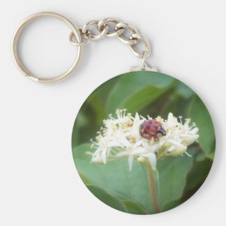 The LadyBug in White Flowers Key Chain