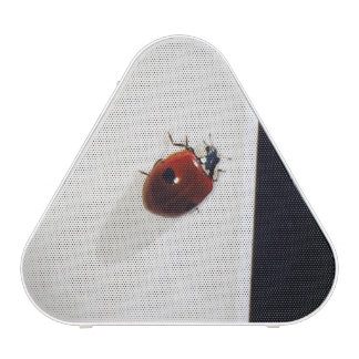 The Ladybug Speaker