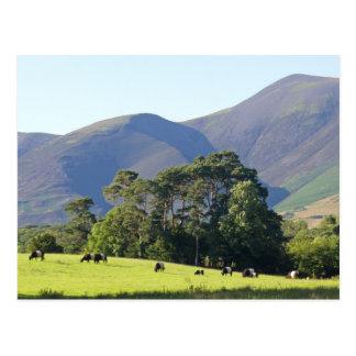 The Lake District-Keswick Post Cards