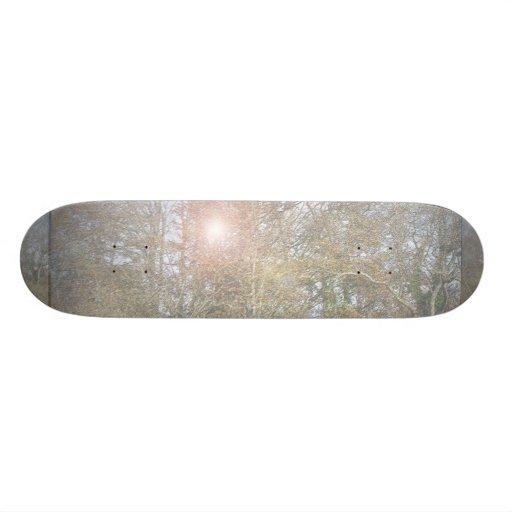 The Lake Skate Decks