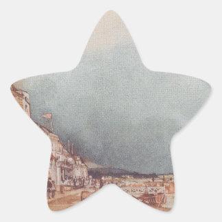 The landing site in Stein an der Donau Star Sticker