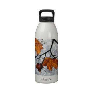 The Last Autumn Leaves Artwork Water Bottle