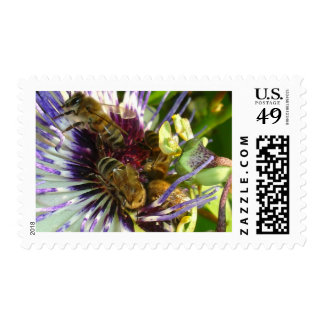 The Last Square Meal of the Day Postage Stamp