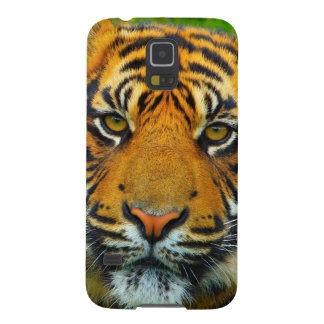 The Last TIger Case For Galaxy S5