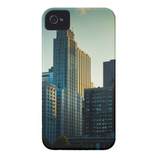 The late afternoon sun casts a golden glow on iPhone 4 case