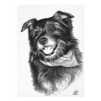 The laughing dog fotografías