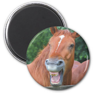The Laughing Horse Magnet