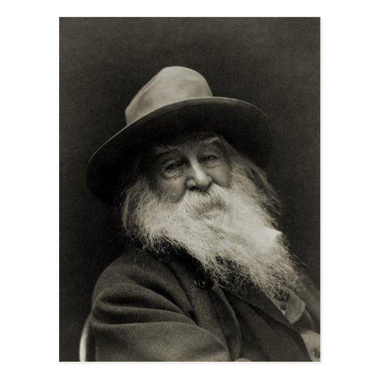 The Laughing Philosopher Poet Walt Whitman Postcard