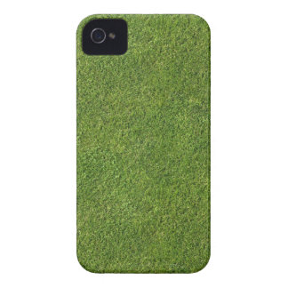 The Lawn Effect iPhone 4 Case