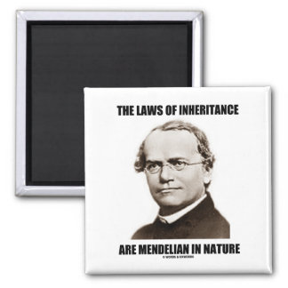 The Laws Of Inheritance Are Mendelian In Nature Fridge Magnet