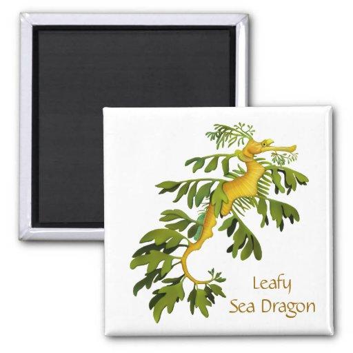 The Leafy Sea Dragon Seahorse Magnet