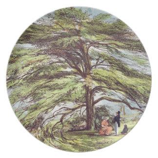 The Lebanon Cedar Tree in the Arboretum, Kew Garde Plate
