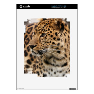 The Leopard iPad 2 Decals