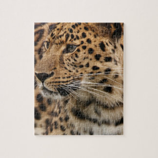 The Leopard Jigsaw Puzzle