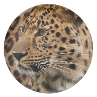 The Leopard Plate